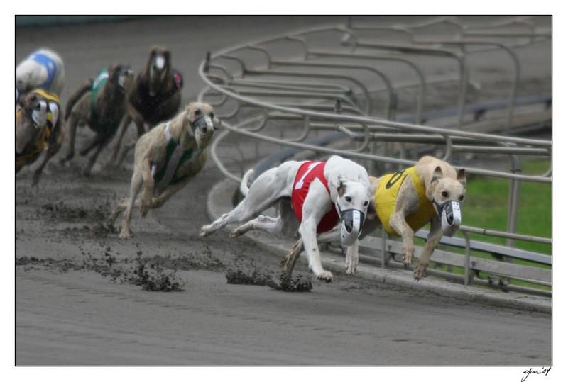 racing 05-29-04 09