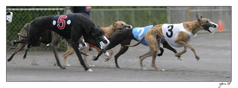 racing 05-29-04 02