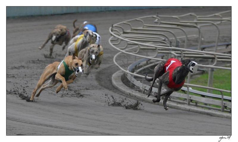 racing 05-29-04 16