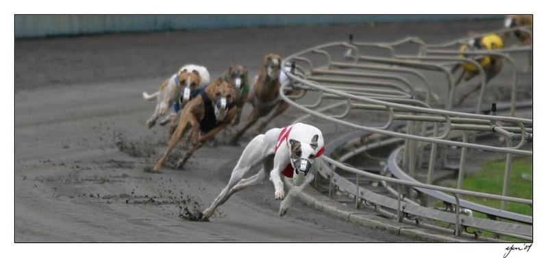 racing 05-29-04 04
