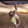 Monkeying around ;)