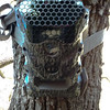 My trail camera