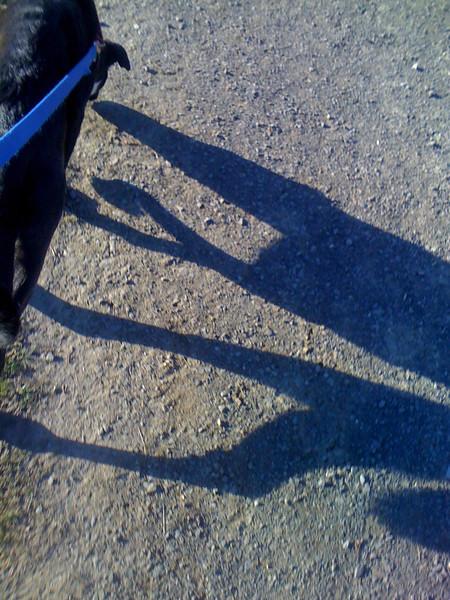 more shadow shots...
