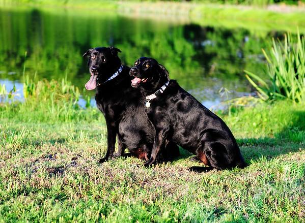 Rita & Sadie