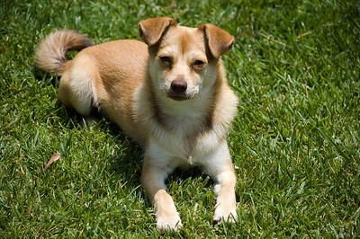 Rusty_20080520_0010