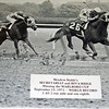 Meadow's Stable's SECRETARIAT and RIVA RIDGE<br /> Winning the MARLBORO CUP<br /> September 15, 1973 --WORLD RECORD<br /> 1:45:2 one mile and one eighth.