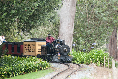 If it wasn't for the engineer you wouldn't be able to tell that it was a miniature train.