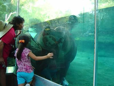 Jabba the Hippo
