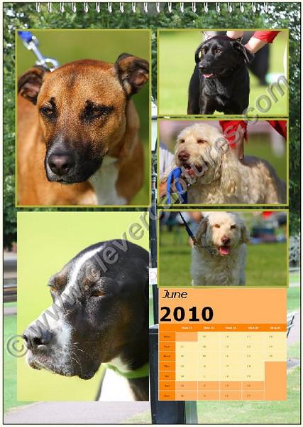 Calendar 07