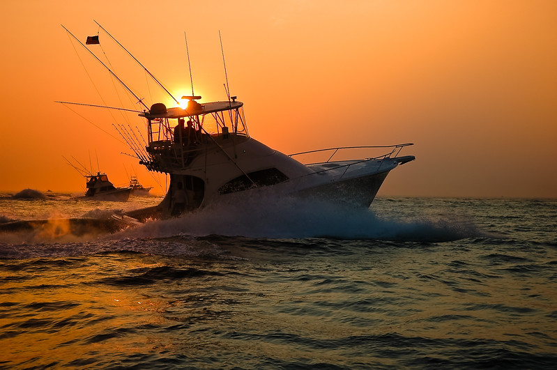 The race is on to get out to the best shark fishing spots first!