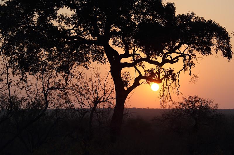 Shindzela Bush camp, Timbavati, Greater kruger National Park, South Africa,