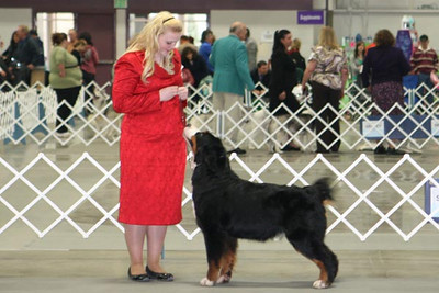 Rosie with Ange in Albany, February 2011.