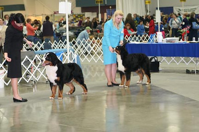 Ange with Merik in winner's dog competition.