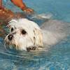 First swim 2