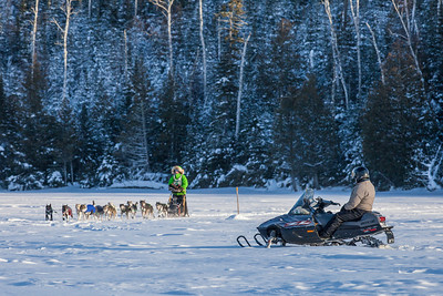 SLED DOGS 9990  Ryan Redington - Knik, AK - Crossing Hungry Jack Lake  2014 Gichigami Express Sled Dog Race - Cook County, MN