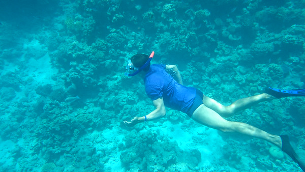 Snorkling at Ras Mohammad