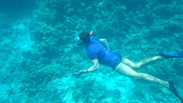 Snorkling at Ras Mohammad