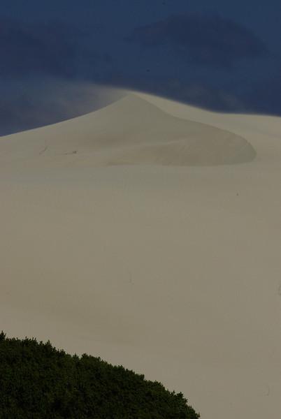 De Hoop dunes