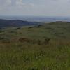 high veld, Marievale