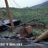 Prince Olav Harbor- shipwrecked- Brutus, South Georgia Island