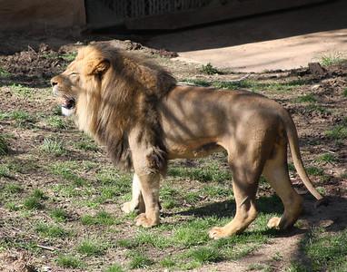 St. Louis Zoo 3/24/2012