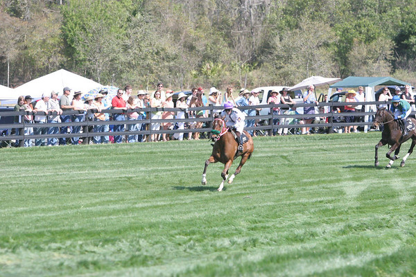 Steeplechase at Little Everglades Ranch