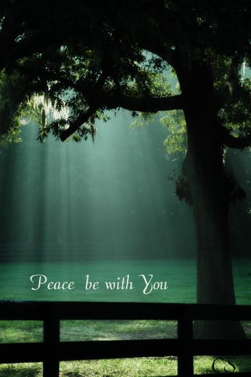 peace1133