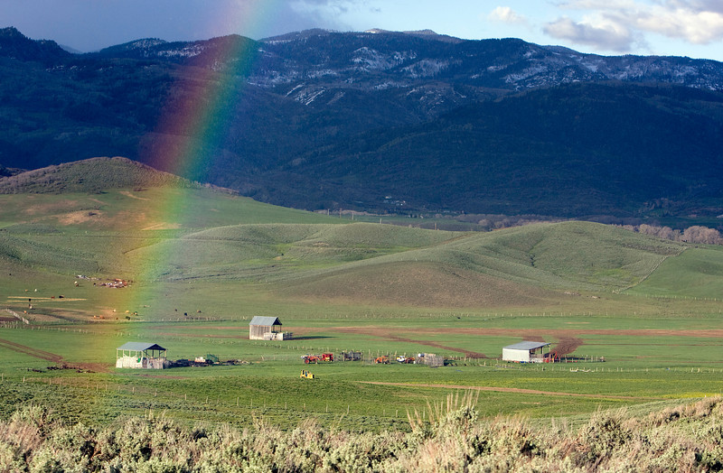 No cows, but I can't pass up a rainbow