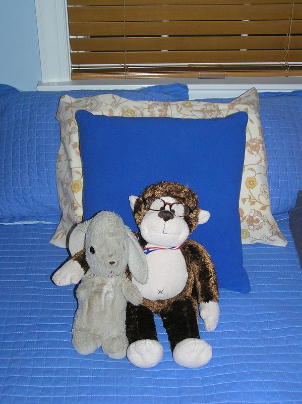 Fuzzy the rabbit and Champ the monkey