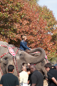 [Filename: elephantwalk-57-1.jpg]   Copyright 2011 - Michael Blitch Photography