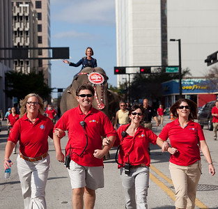 [Filename: elephantwalk-90-1.jpg]   Copyright 2011 - Michael Blitch Photography