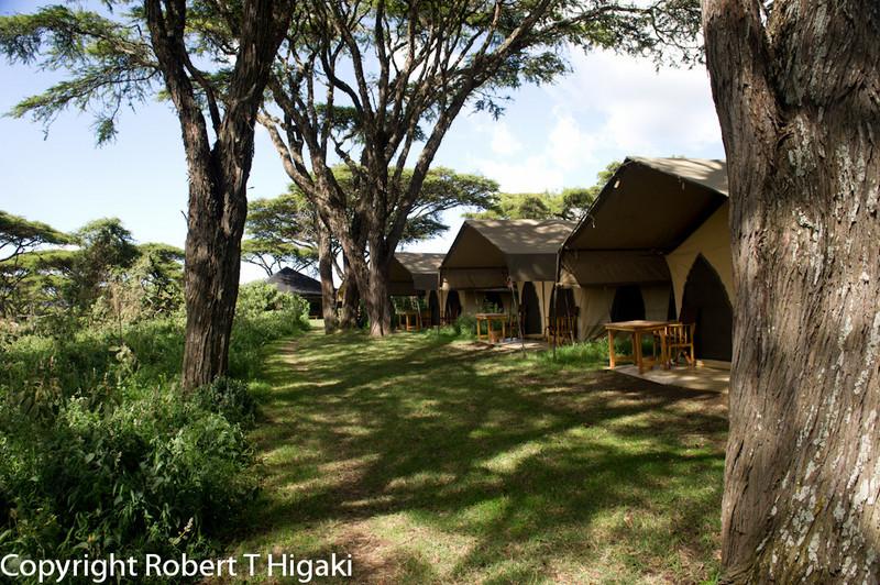 Ngorongoro Nyumba<br /> Again, very comfortable