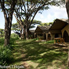 Ngorongoro Nyumba<br /> Again, very comfortable