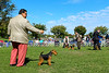 161008-DogShow-044