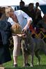 091002-TerrierShow-103