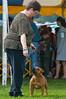 091002-TerrierShow-150