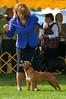 091002-TerrierShow-232