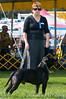 091002-TerrierShow-243