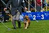 091002-TerrierShow-045