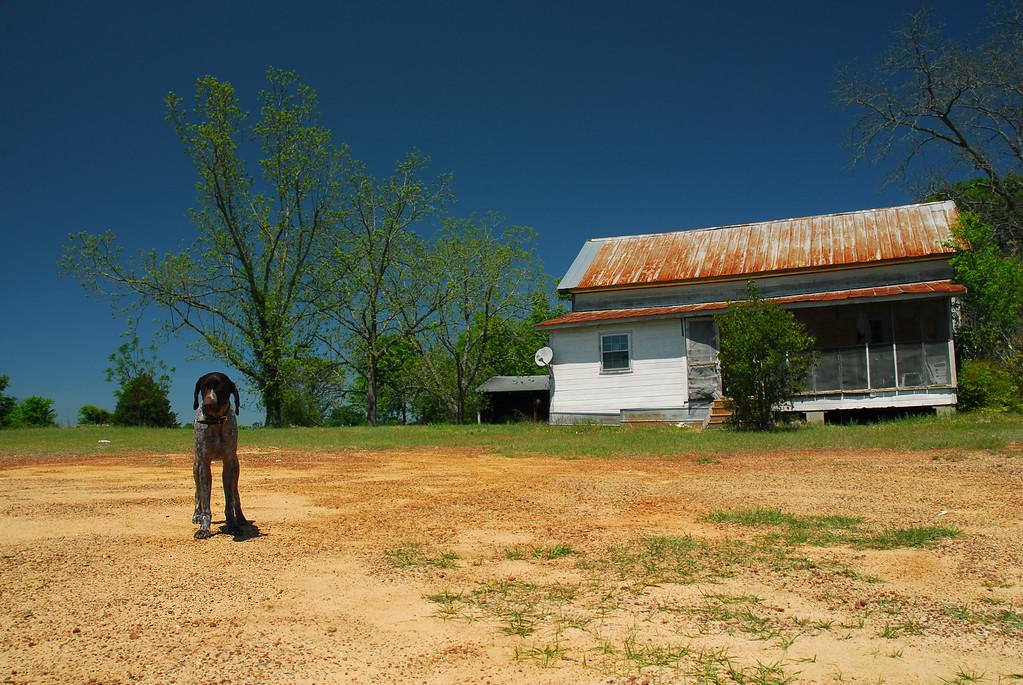 Tessa [April 13, 2010] Montgomery County (GA)