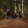 trail companions