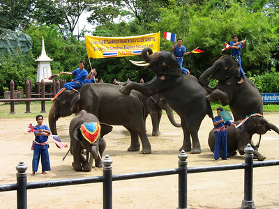 Thailand -- Samphran Elephant Ground and Zoo