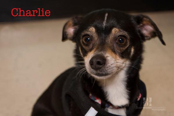 Charlie1 WMN