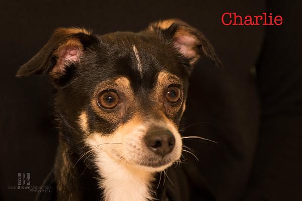 Charlie 2 WMN
