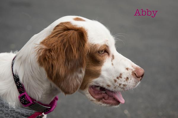Abby 2 WMN
