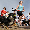 "Runners and their dogs take off at the Canine Classic.<br /> The annual Canine Classic race and carnival was held at the Boulder Reservoir on Sunday.<br /> For more photos and a video, go to  <a href=""http://www.dailycamera.com"">http://www.dailycamera.com</a>.<br /> Cliff Grassmick / April 18, 2010"