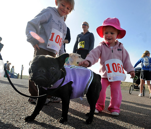 "Jackson Baranyi, 3, and his  sister,  Ava, 1, can't help but pet Beaujolais, the French bulldog before the race.<br /> The annual Canine Classic race and carnival was held at the Boulder Reservoir on Sunday.<br /> For more photos and a video, go to  <a href=""http://www.dailycamera.com"">http://www.dailycamera.com</a>.<br /> Cliff Grassmick / April 18, 2010"
