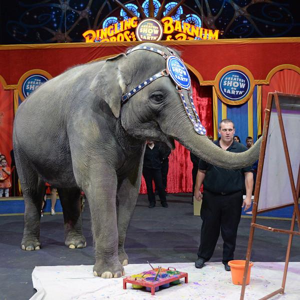 Elephant painter