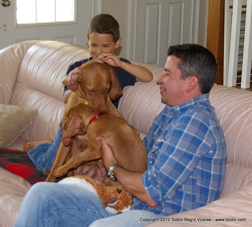 Tucker - aka Mr. Red - Toldin's Rip Red Reflection meeting his dad Jeff