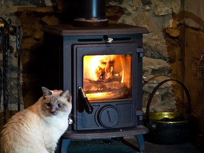 Cinders next to the fire